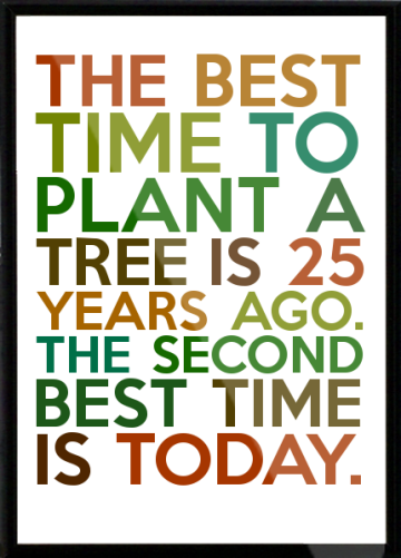 The-best-time-to-plant-a-tree-is-25-years-ago-The-second-best-time-is-today-Framed-Quote-9